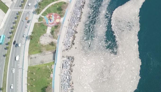 Kartal sahilinde korkutan görüntü