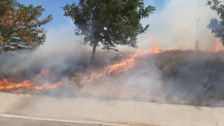 Balıkesir'de çıkan yangında 300 dönüm otluk alan zarar gördü