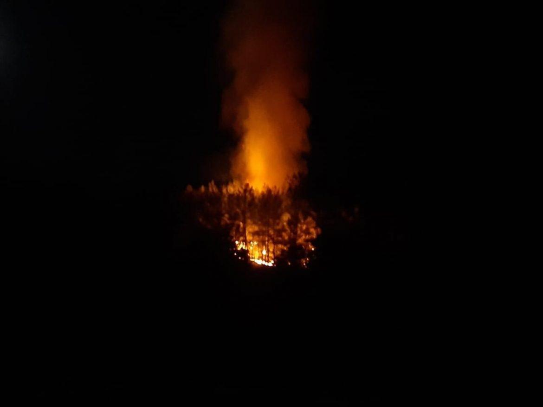 Fethiye'de orman yangını!
